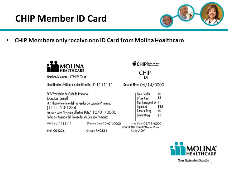 Headline Goes Here Item 1 Item 2 Item 3 CHIP Member ID Card CHIP Members only receive one ID Card from Molina Healthcare 15