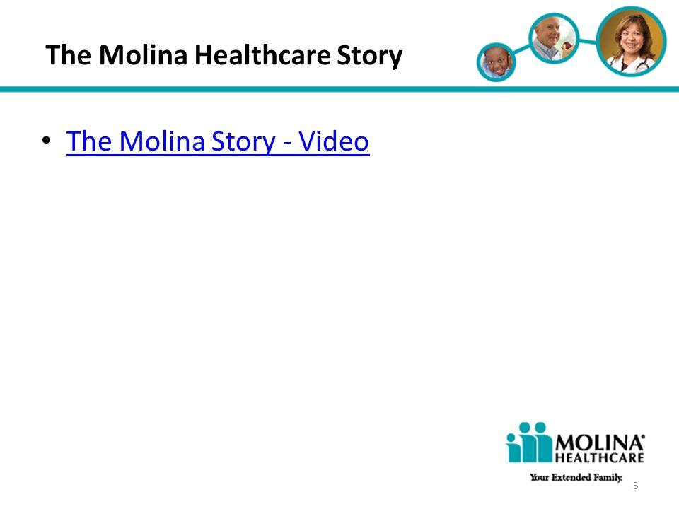 Headline Goes Here Item 1 Item 2 Item 3 The Molina Healthcare Story 3 The Molina Story - Video