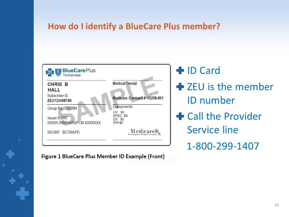 How do I identify a BlueCare Plus member.