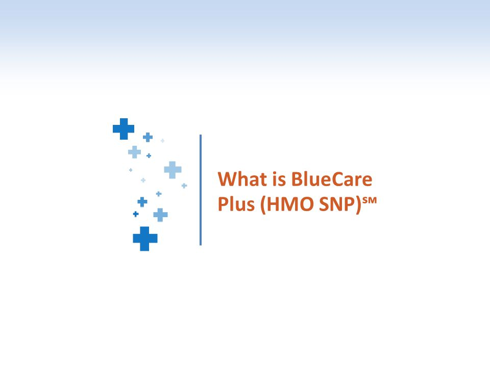What is BlueCare Plus (HMO SNP)℠