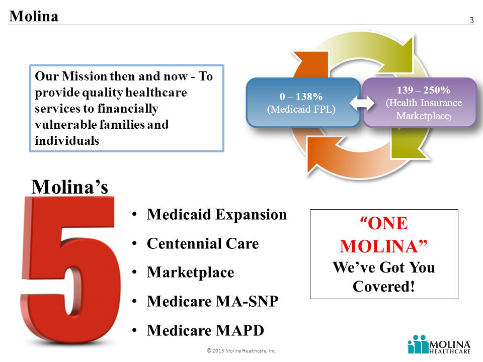 4 © 2013 Molina Healthcare, Inc.