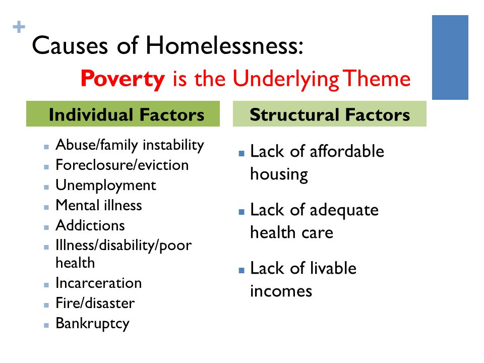 + Causes of Homelessness: Poverty is the Underlying Theme Abuse/family instability Foreclosure/eviction Unemployment Mental illness Addictions Illness/disability/poor health Incarceration Fire/disaster Bankruptcy Lack of affordable housing Lack of adequate health care Lack of livable incomes Individual FactorsStructural Factors