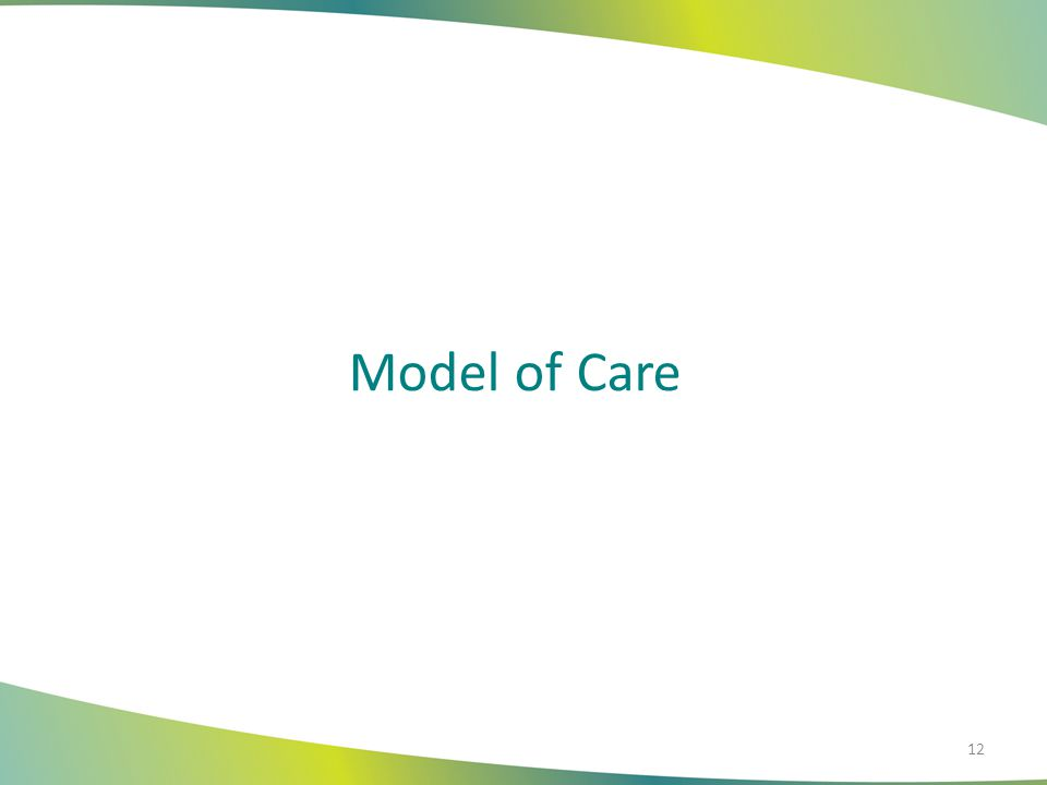 CCAI Model of Care Person Centered with Six Domains Medical Functional Environmental Financial Social Support Psychological/Behavioral Health Focus on the Whole Person 13