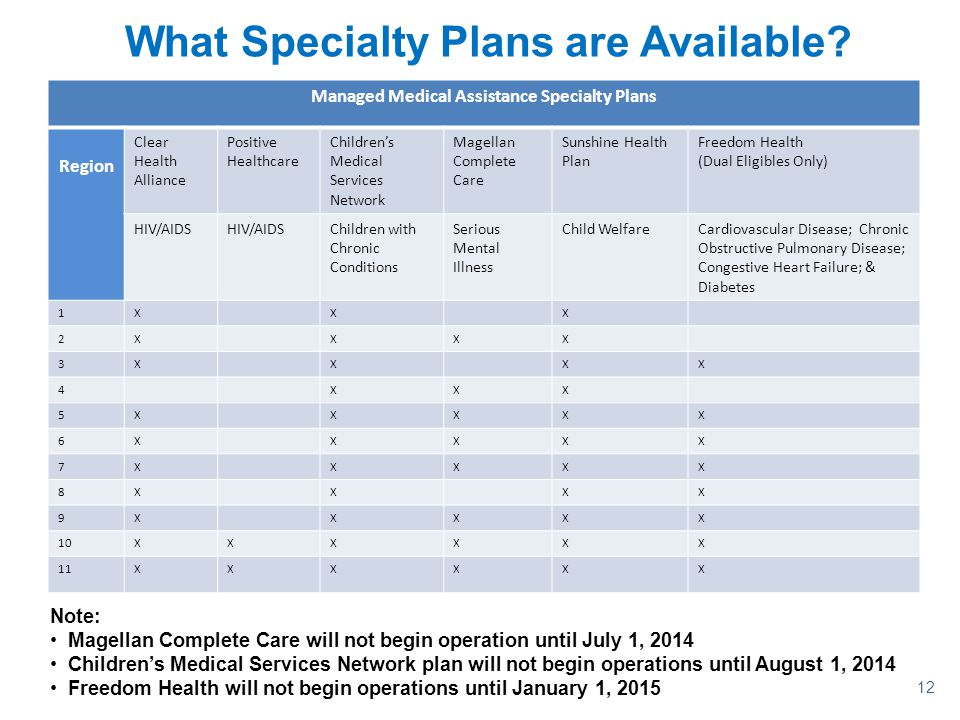12 What Specialty Plans are Available? Managed Medical Assistance Specialty Plans Region Clear Health Alliance Positive Healthcare Children's Medical