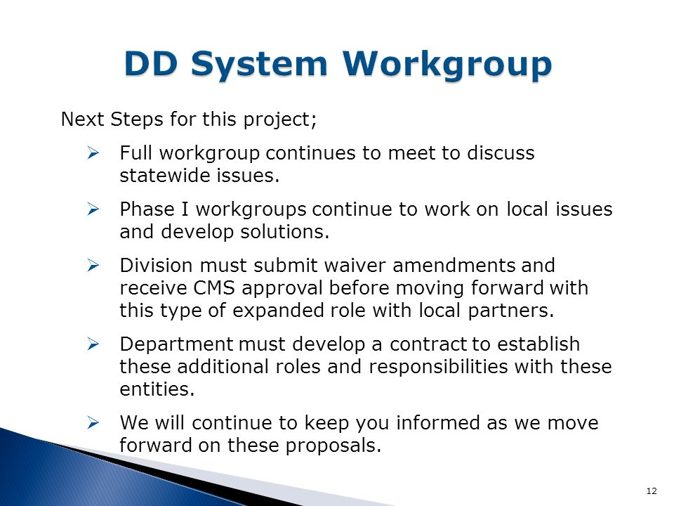 Next Steps for this project;  Full workgroup continues to meet to discuss statewide issues.