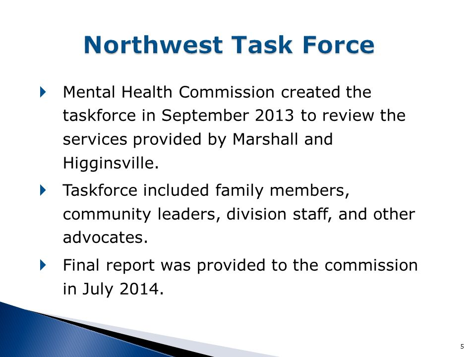  Mental Health Commission created the taskforce in September 2013 to review the services provided by Marshall and Higginsville.