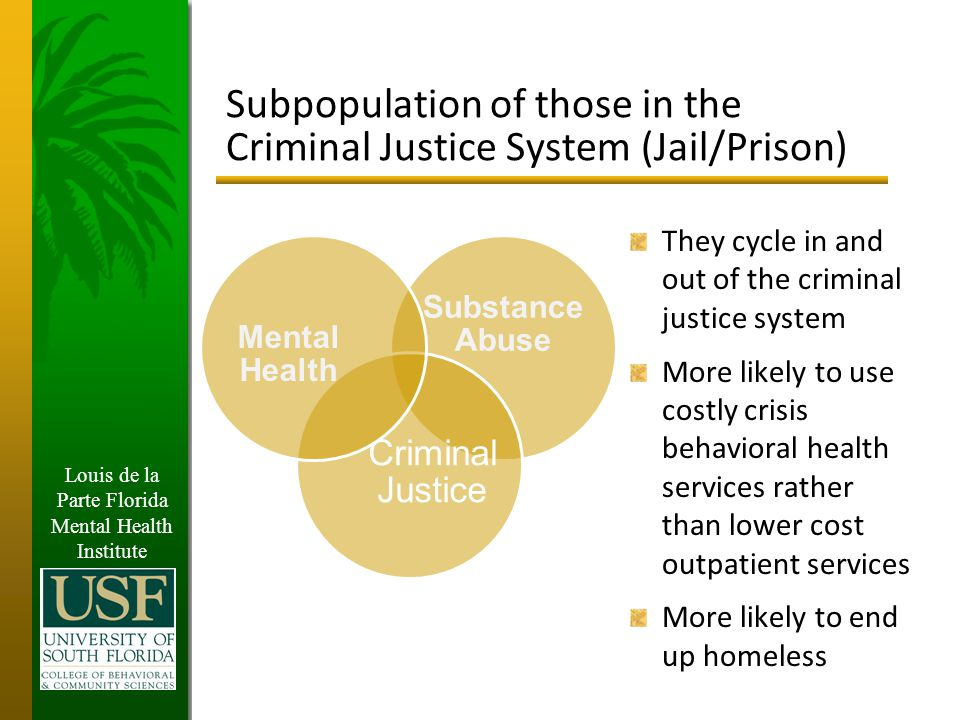 Louis de la Parte Florida Mental Health Institute Subpopulation of those in the Criminal Justice System (Jail/Prison) They cycle in and out of the criminal justice system More likely to use costly crisis behavioral health services rather than lower cost outpatient services More likely to end up homeless Substance Abuse Criminal Justice Mental Health