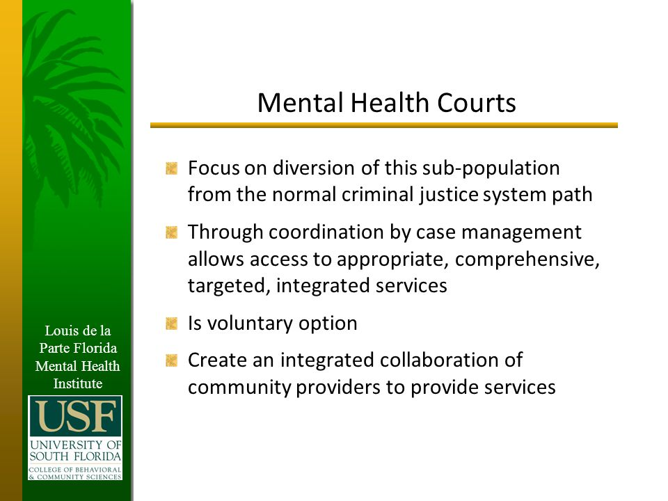 Louis de la Parte Florida Mental Health Institute Integrated Access to Services Other Community Support Mental Health Services Social Services Substance Abuse Services Jails, Courts Access to Appropriate Services