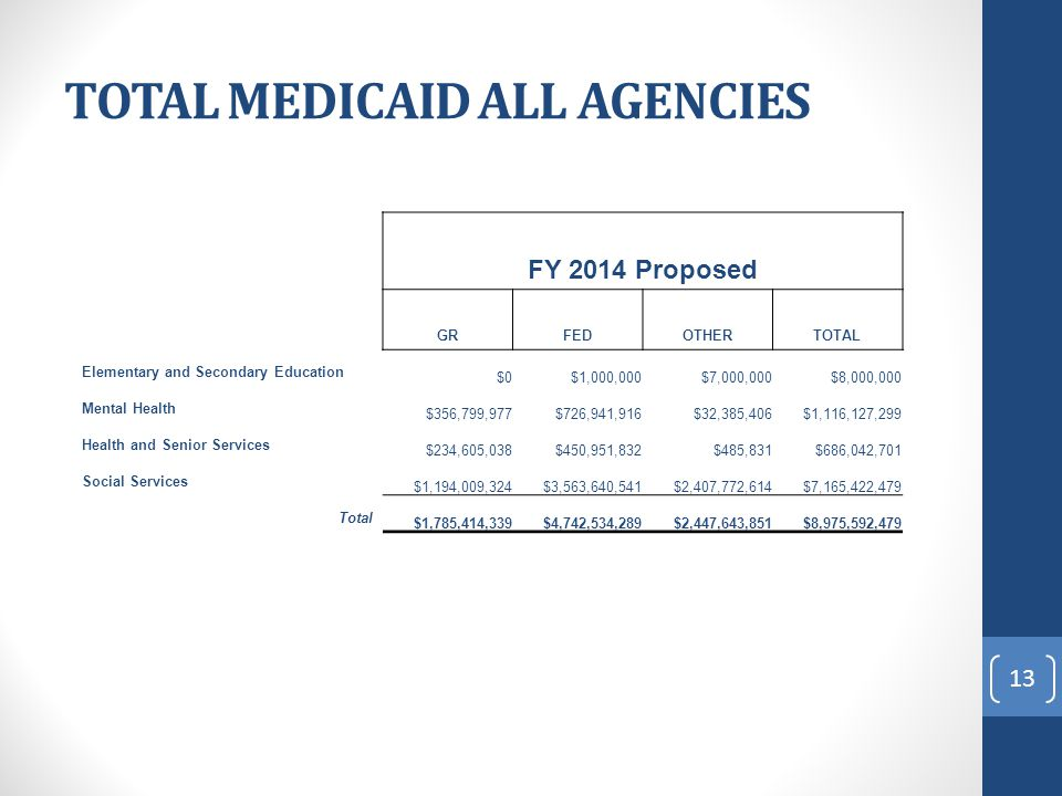 TOTAL MEDICAID ALL AGENCIES FY 2014 Proposed GRFEDOTHERTOTAL Elementary and Secondary Education $0$1,000,000$7,000,000$8,000,000 Mental Health $356,799,977$726,941,916$32,385,406$1,116,127,299 Health and Senior Services $234,605,038$450,951,832$485,831$686,042,701 Social Services $1,194,009,324$3,563,640,541$2,407,772,614$7,165,422,479 Total $1,785,414,339$4,742,534,289$2,447,643,851$8,975,592,479 13