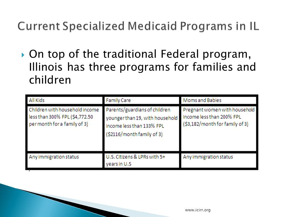  On top of the traditional Federal program, Illinois has three programs for families and children www.icirr.org