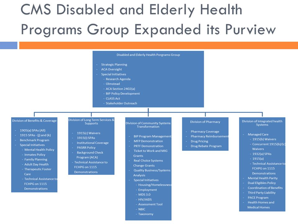 CMS Disabled and Elderly Health Programs Group Expanded its Purview