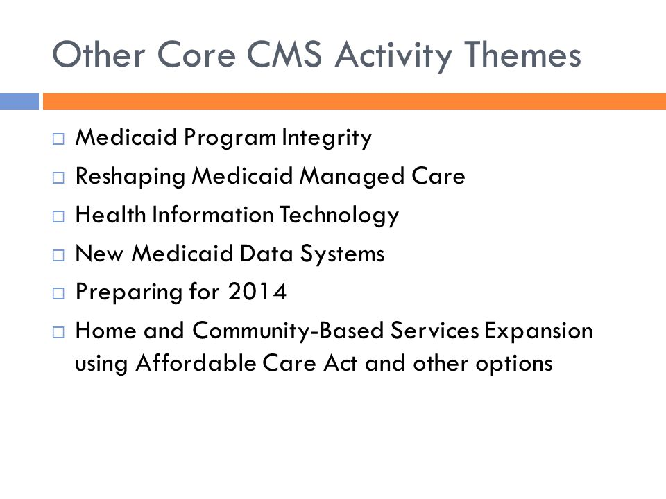 Other Core CMS Activity Themes  Medicaid Program Integrity  Reshaping Medicaid Managed Care  Health Information Technology  New Medicaid Data Syst
