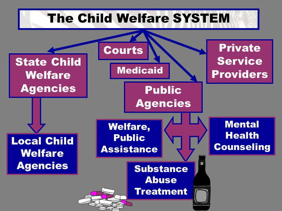 The Child Welfare SYSTEM State Child Welfare Agencies Local Child Welfare Agencies Private Service Providers Courts Medicaid Public Agencies Welfare,