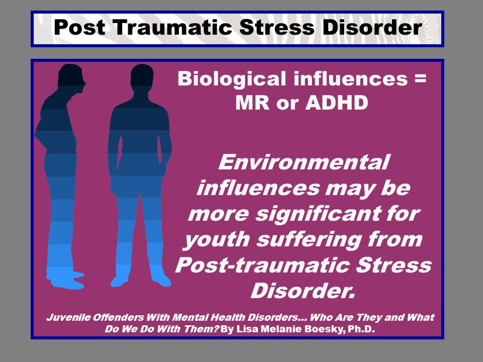Post Traumatic Stress Disorder Juvenile Offenders With Mental Health Disorders… Who Are They and What Do We Do With Them? By Lisa Melanie Boesky, Ph.D