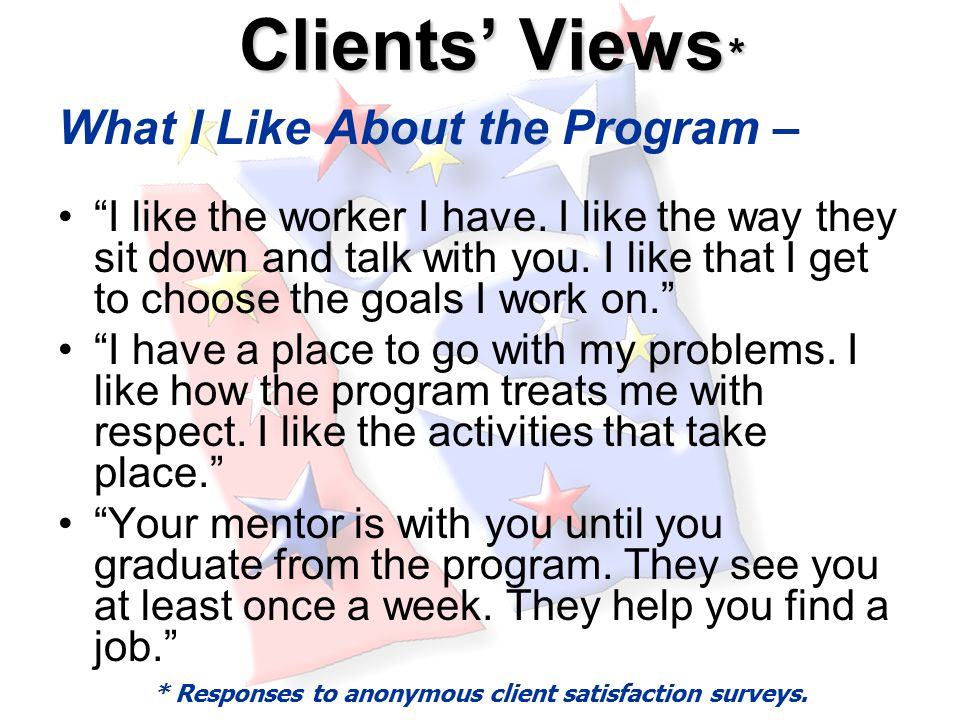 Clients' Views * Clients' Views * What I Like About the Program – I like the worker I have.