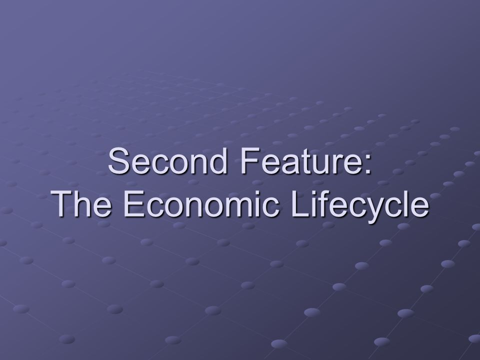 Second Feature: The Economic Lifecycle
