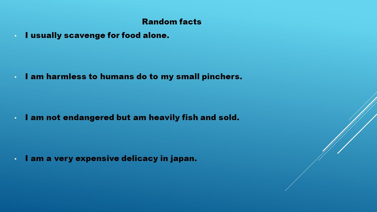 Random facts I usually scavenge for food alone. I am harmless to humans do to my small pinchers.