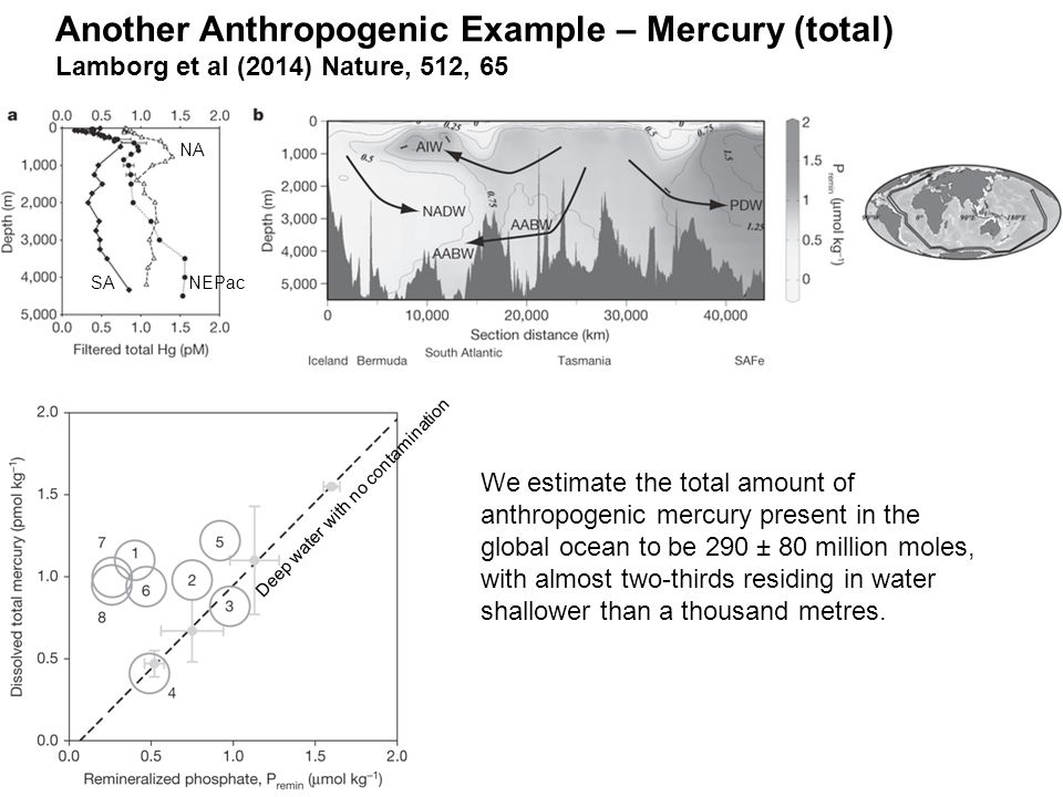 Another Anthropogenic Example – Mercury (total) Lamborg et al (2014) Nature, 512, 65 NA SANEPac Deep water with no contamination We estimate the total