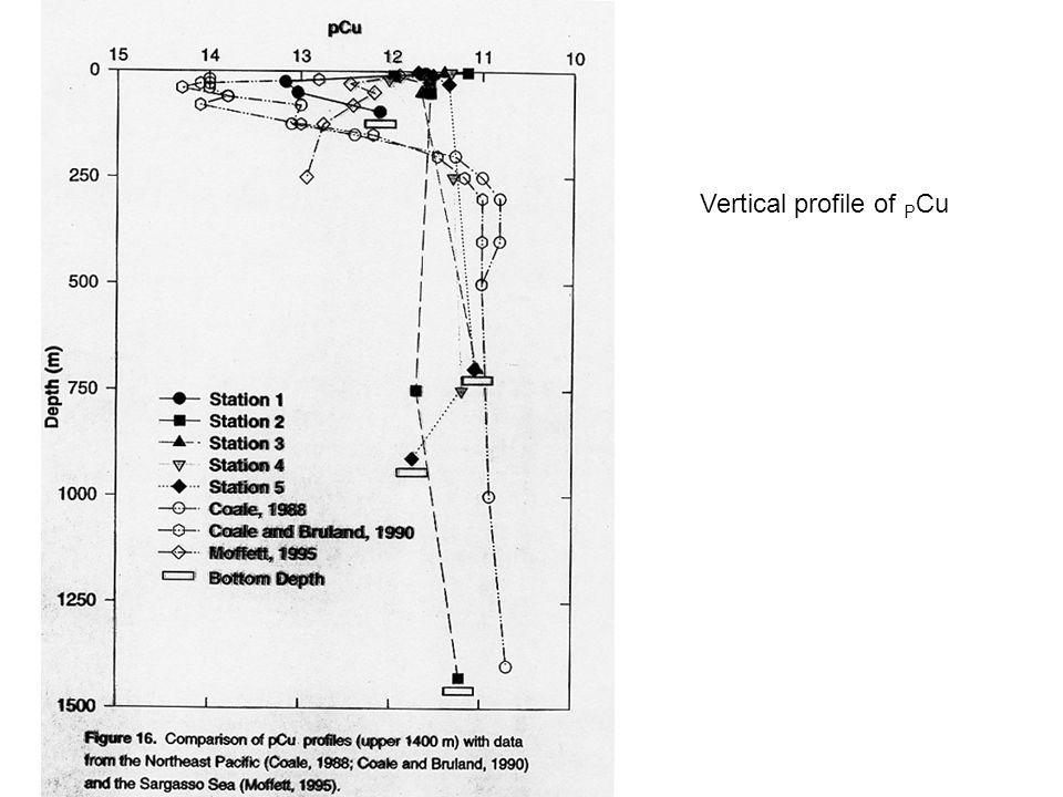 Vertical profile of P Cu