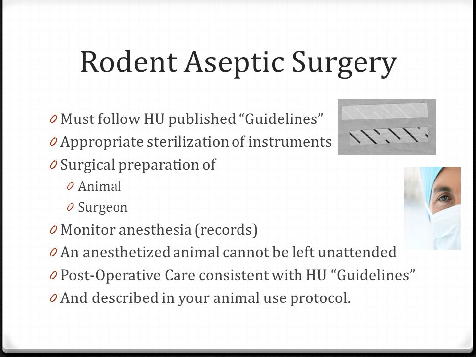 Rodent Aseptic Surgery 0 Must follow HU published Guidelines 0 Appropriate sterilization of instruments 0 Surgical preparation of 0 Animal 0 Surgeon 0 Monitor anesthesia (records) 0 An anesthetized animal cannot be left unattended 0 Post-Operative Care consistent with HU Guidelines 0 And described in your animal use protocol.