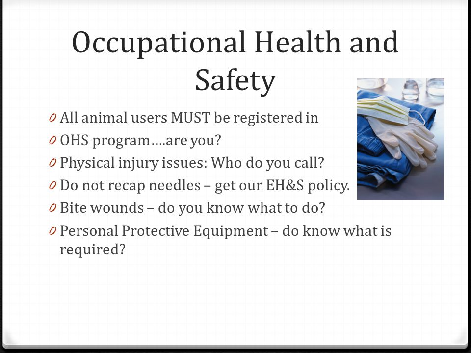 Occupational Health and Safety 0 All animal users MUST be registered in 0 OHS program….are you.