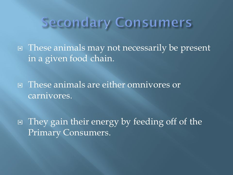  These animals may not necessarily be present in a given food chain.