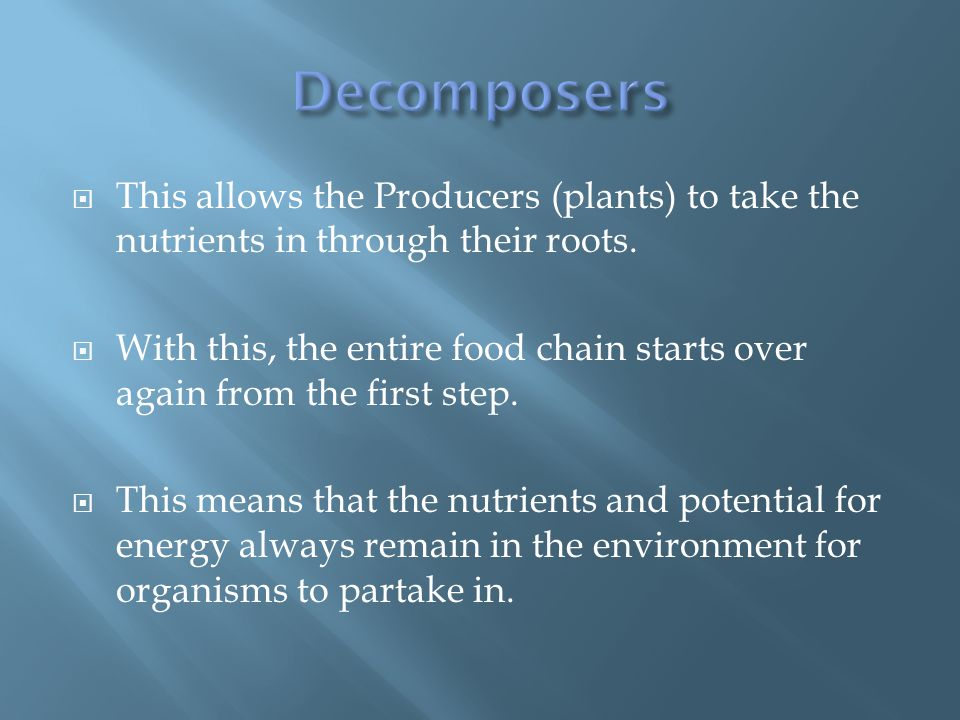  This allows the Producers (plants) to take the nutrients in through their roots.