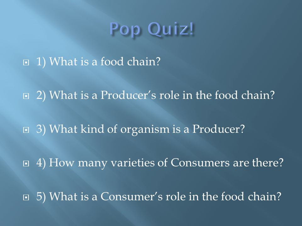  1) What is a food chain.  2) What is a Producer's role in the food chain.