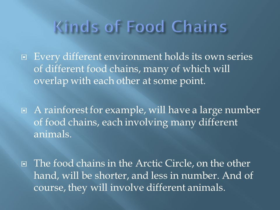  Every different environment holds its own series of different food chains, many of which will overlap with each other at some point.