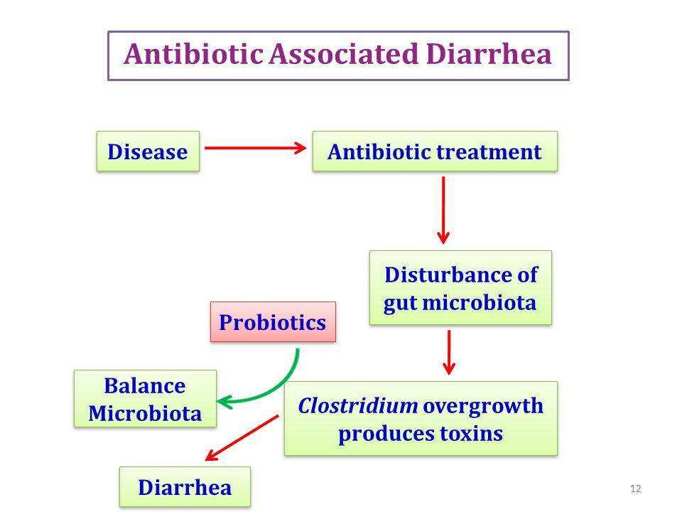 Antibiotic Associated Diarrhea Disease Antibiotic treatment Disturbance of gut microbiota Disturbance of gut microbiota Clostridium overgrowth produces toxins Diarrhea 12 Balance Microbiota Probiotics
