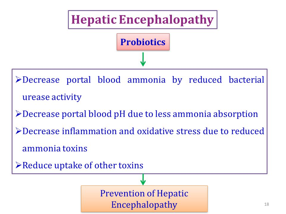  Decrease portal blood ammonia by reduced bacterial urease activity  Decrease portal blood pH due to less ammonia absorption  Decrease inflammation and oxidative stress due to reduced ammonia toxins  Reduce uptake of other toxins Probiotics Prevention of Hepatic Encephalopathy Hepatic Encephalopathy 18