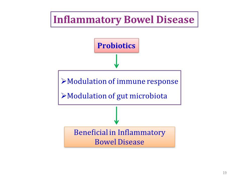 Inflammatory Bowel Disease  Modulation of immune response  Modulation of gut microbiota Probiotics Beneficial in Inflammatory Bowel Disease 19