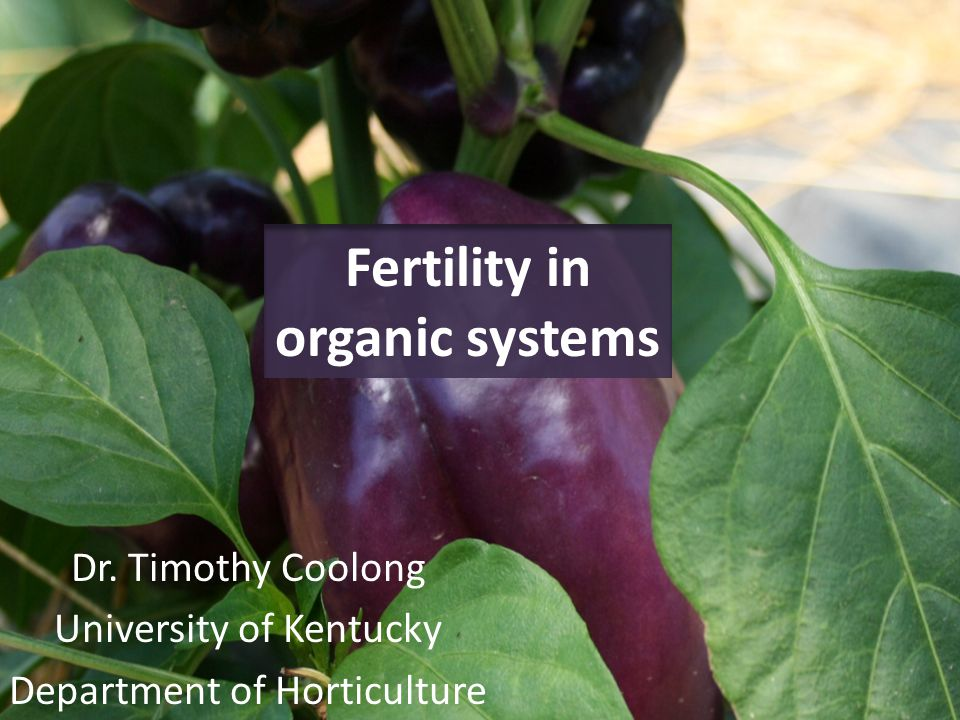Fertility in organic systems Dr. Timothy Coolong University of Kentucky Department of Horticulture