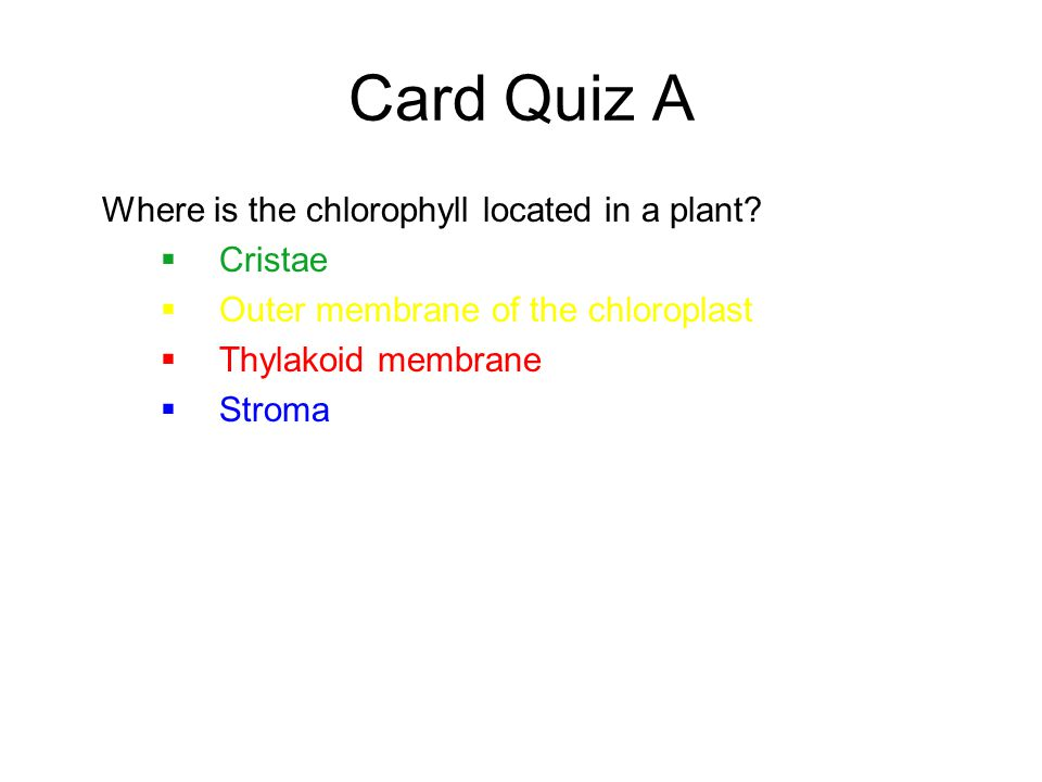 Card Quiz A Where is the chlorophyll located in a plant.