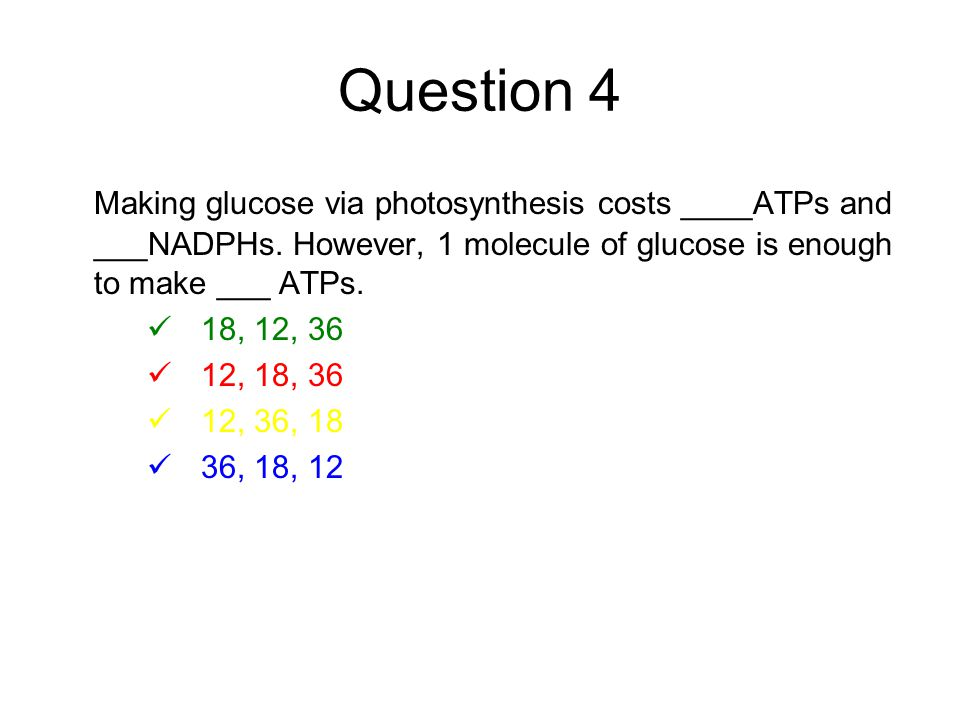 Question 4 Making glucose via photosynthesis costs ____ATPs and ___NADPHs.
