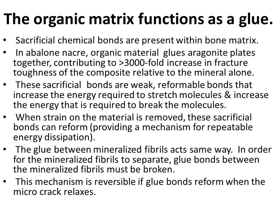 The organic matrix functions as a glue.Sacrificial chemical bonds are present within bone matrix.