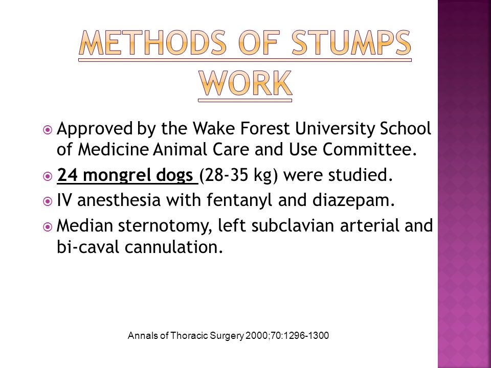  Approved by the Wake Forest University School of Medicine Animal Care and Use Committee.  24 mongrel dogs (28-35 kg) were studied.  IV anesthesia