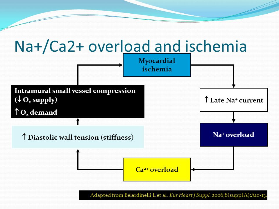 Na+/Ca2+ overload and ischemia Adapted from Belardinelli L et al.
