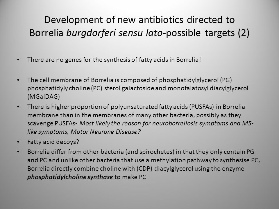 Development of new antibiotics directed to Borrelia burgdorferi sensu lato-possible targets (2) There are no genes for the synthesis of fatty acids in
