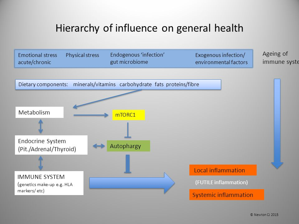 Hierarchy of influence on general health IMMUNE SYSTEM ( genetics make-up e.g. HLA markers/ etc) Emotional stress acute/chronic Physical stress Ageing