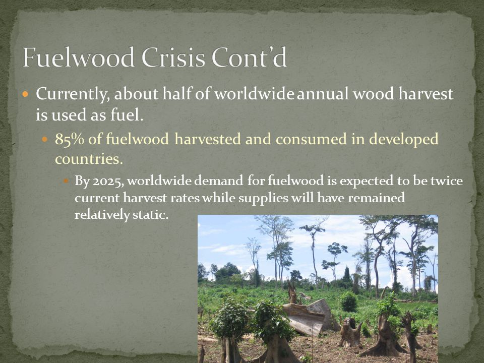 11 Currently, about half of worldwide annual wood harvest is used as fuel. 85% of fuelwood harvested and consumed in developed countries. By 2025, wor