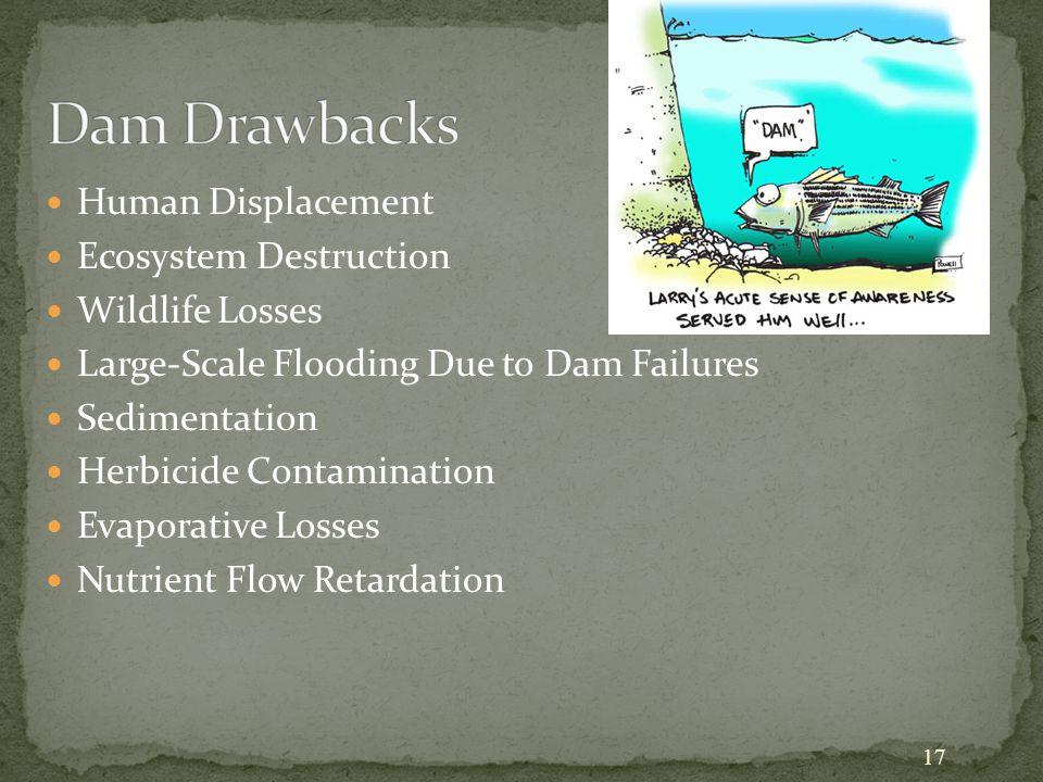 17 Human Displacement Ecosystem Destruction Wildlife Losses Large-Scale Flooding Due to Dam Failures Sedimentation Herbicide Contamination Evaporative