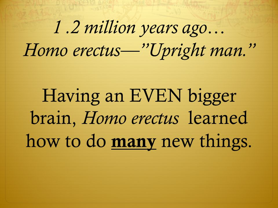 1.2 million years ago… Homo erectus— Upright man. Having an EVEN bigger brain, Homo erectus learned how to do many new things.
