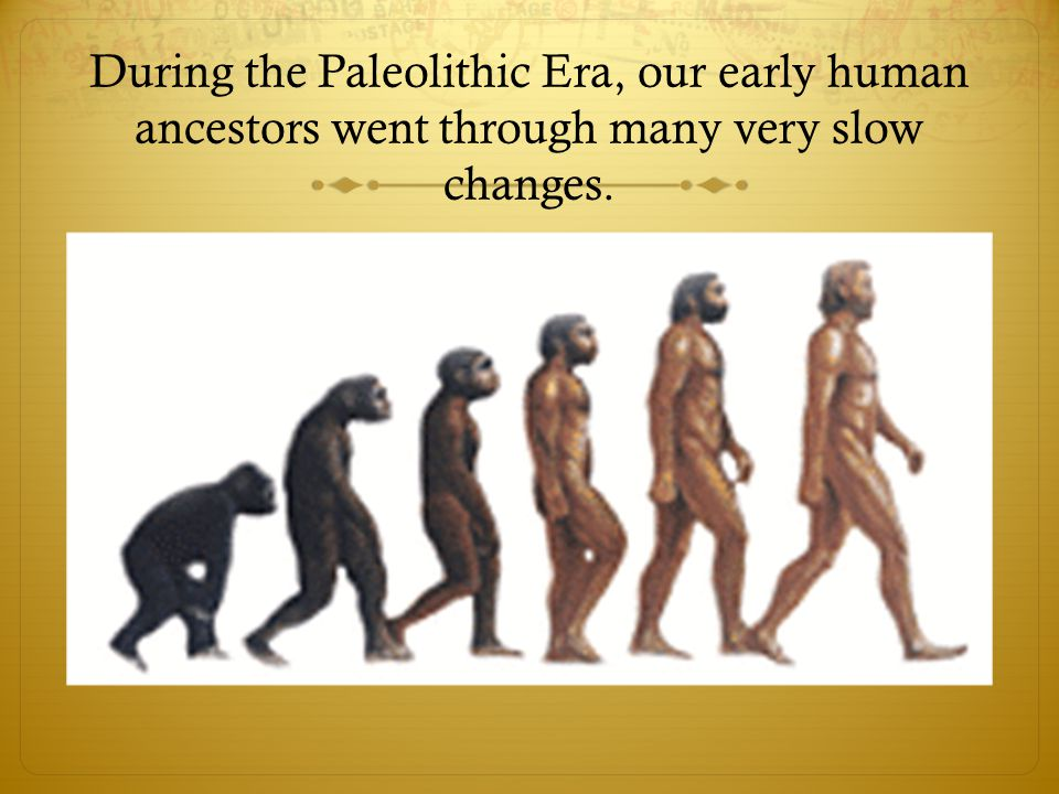 During the Paleolithic Era, our early human ancestors went through many very slow changes.