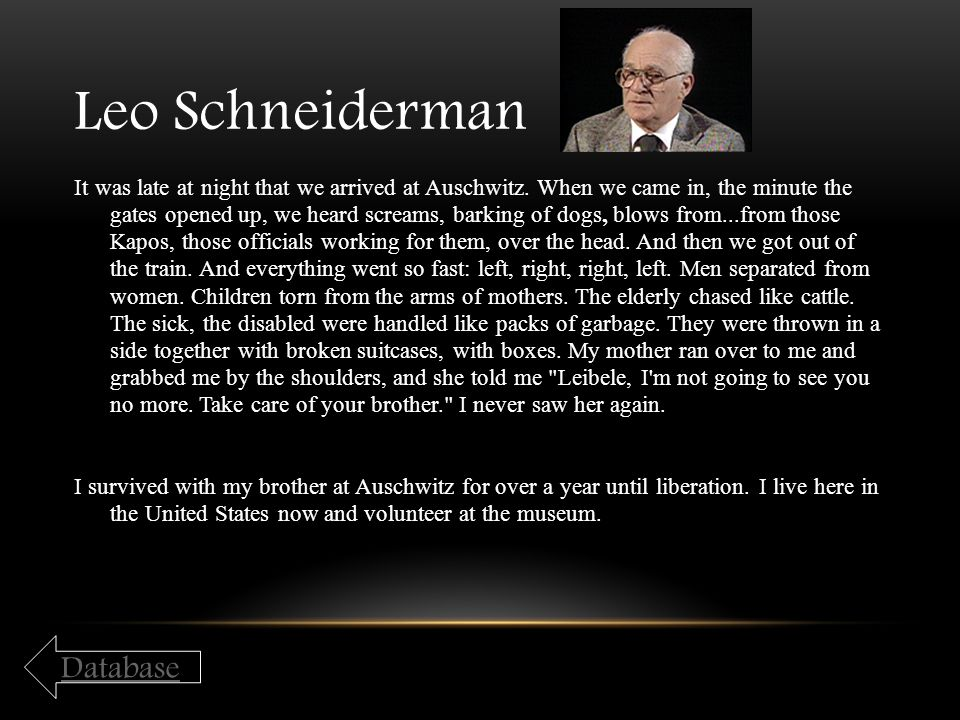 Leo Schneiderman It was late at night that we arrived at Auschwitz. When we came in, the minute the gates opened up, we heard screams, barking of dogs