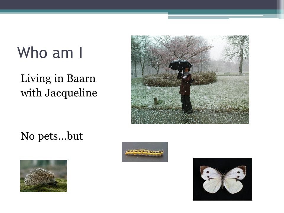 Who am I Living in Baarn with Jacqueline No pets…but