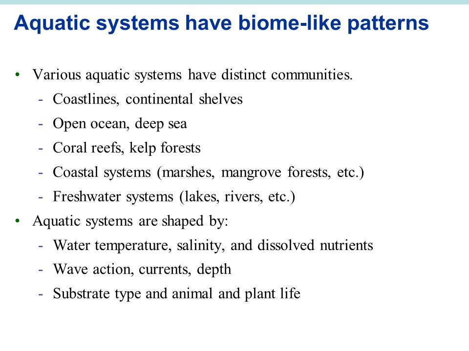 Aquatic systems have biome-like patterns Various aquatic systems have distinct communities.
