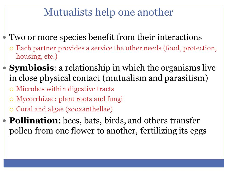Mutualists help one another Two or more species benefit from their interactions  Each partner provides a service the other needs (food, protection, h