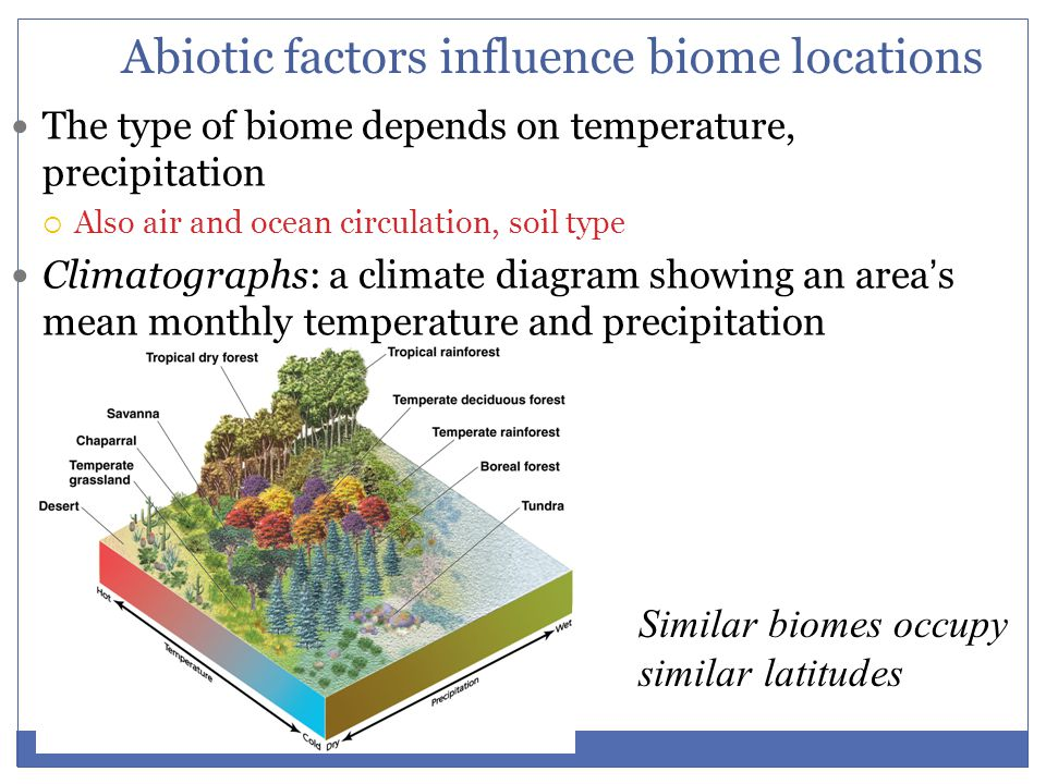 Abiotic factors influence biome locations The type of biome depends on temperature, precipitation  Also air and ocean circulation, soil type Climatog