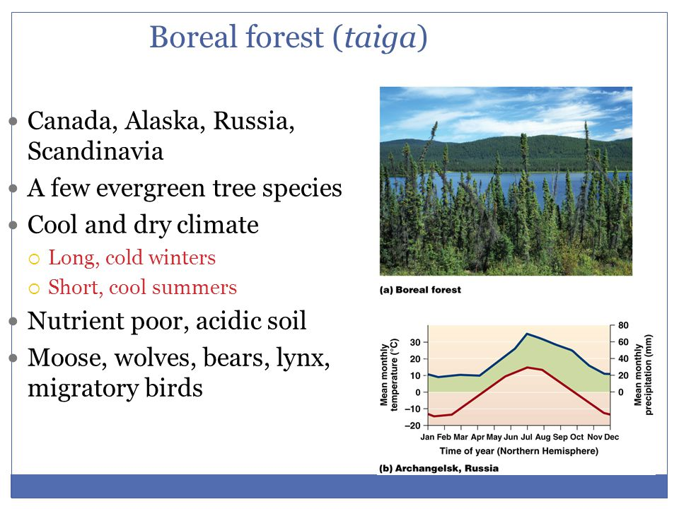 Boreal forest (taiga) Canada, Alaska, Russia, Scandinavia A few evergreen tree species Cool and dry climate  Long, cold winters  Short, cool summers